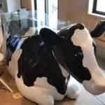 等身大の牛のガラステーブル